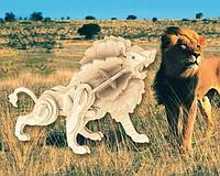 Маленький лев