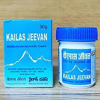 Кайлаш Дживан Kailash Jeevan - натуральный противовоспалительный, антисептический, заживляющий крем, 30 гр.
