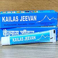 Кайлаш Дживан  Kailash Jeevan - натуральный противовоспалительный, антисептический, заживляющий крем, 20 гр