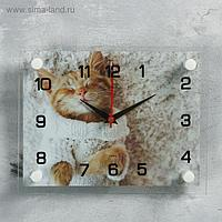 """Часы настенные, серия: Животный мир, """"Мур-Мур"""", 20х26 см, микс"""