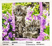 """Картина по номерам """" Котята """" 50*40см"""