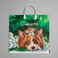 Пакет 'Шарлотта', полиэтиленовый с пластиковой ручкой, 38 х 35 см, 90 мкм (комплект из 10 шт.)