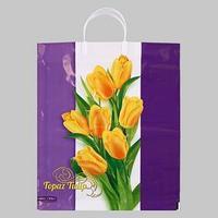 Пакет ' Нежные тюльпаны', полиэтиленовый с пластиковой ручкой, 38х44 см, 90 мкм (комплект из 5 шт.)