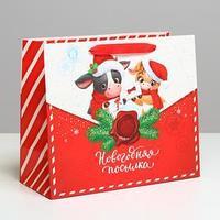 Пакет ламинированный горизонтальный 'Новогодняя посылка', ML 27 x 23 x 11,5 см (комплект из 6 шт.)