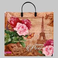 Пакет 'Париж с розами', полиэтиленовый с пластиковой ручкой, 37х35 см, 90 мкм (комплект из 5 шт.)