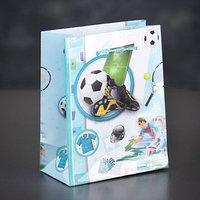 Пакет ламинированный 'Футбол', 12 х 15 х 5 см (комплект из 12 шт.)