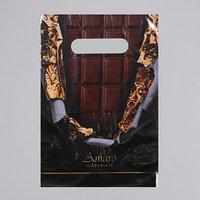 Пакет 'Горький шоколад', полиэтиленовый с вырубной ручкой, 20 х 30 см, 30 мкм (комплект из 100 шт.)