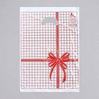 Пакет 'Красная клетка', полиэтиленовый с вырубной ручкой, 22 х 30 см, 12 мкм (комплект из 100 шт.)