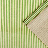 """Бумага упаковочная крафт """"Полосы светло-зелёные"""", 0,7 х 10 м, 40 г/м²"""
