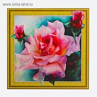 Алмазная картина «Нежные розы»