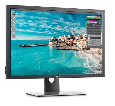 Монитор Dell UP3017 (210-AXWC)