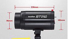 1 Комплект импульсного освещения для фото Godox ST250 2400W, фото 3