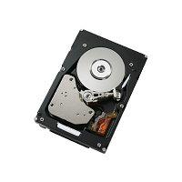 Жесткий диск IBM 1Tb 45J7918