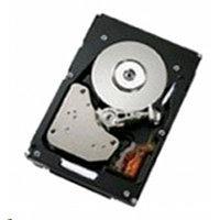 Жесткий диск IBM 300Gb 00NA221
