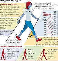 Скандинавские палки / палки для скандинавской ходьбы