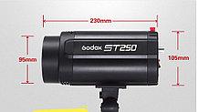 Комплект импульсного освещения для фото Godox ST250 2400W, фото 2