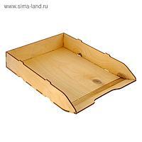 Лоток для бумаг горизонтальный, 320 х 225 х 55 см, деревянный (береза), цвет неокрашенный