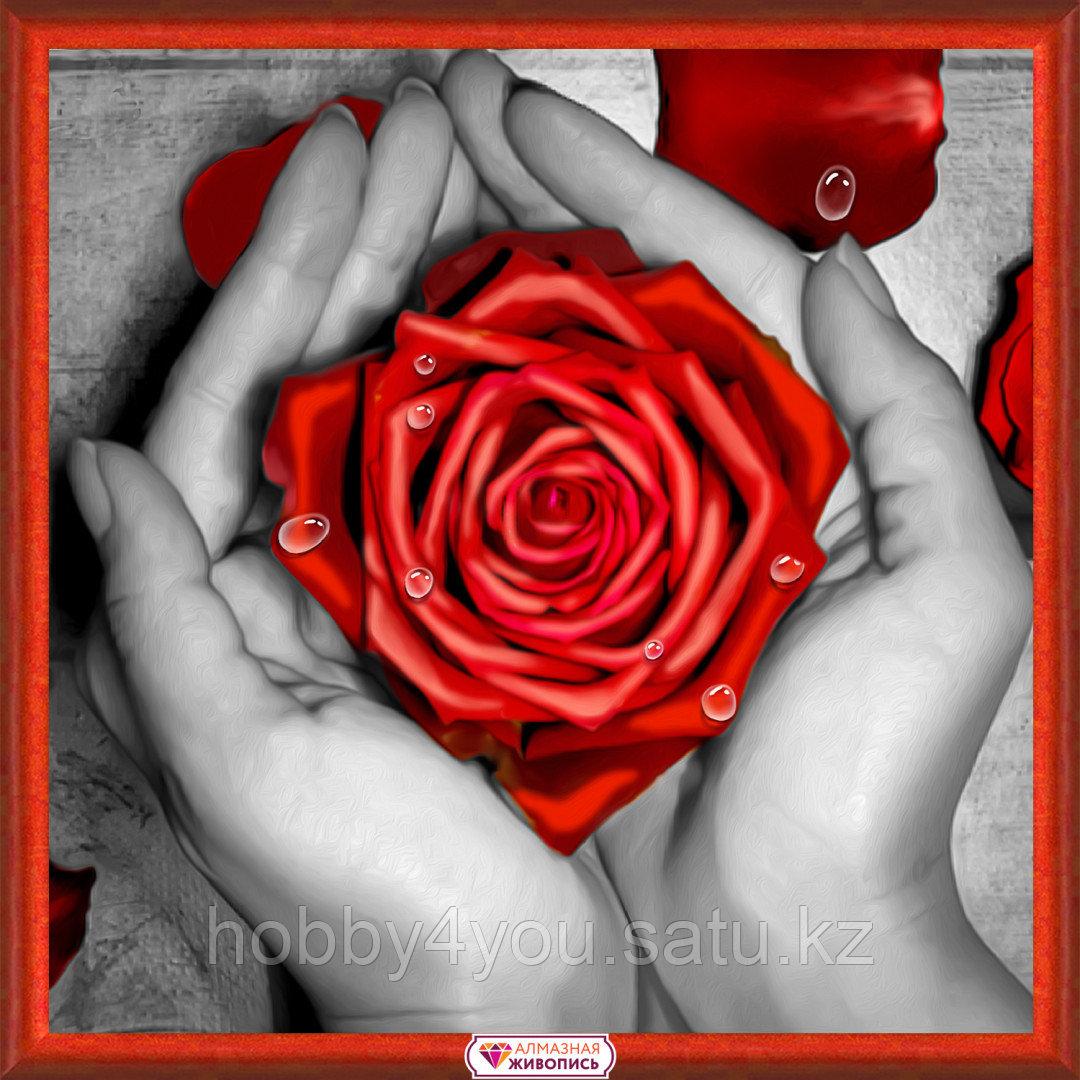 Картина стразами на холсте «Роза в ладонях», 25*25см