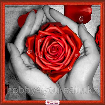 Картина стразами на холсте «Роза в ладонях», 25*25см, фото 2