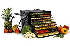 Ремонт сушилок для фруктов и овощей