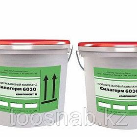 Полиуретан 6030 (фасовка по 1+1 кг)  применяется для изготовления гибких литьевых форм Алматы