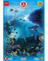 ПАЗЛЫ 26 элементов А4ф 200х300мм в Рамке ЖИВОЙ 3D ПАЗЛ -Акула-