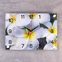 "Часы настенные, серия: Цветы, ""Белые цветы"", 25х35 см, микс"