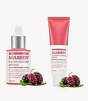 Шикарный подарочный Набор A'pieu mulberry