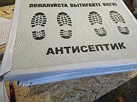 Дезинфицированные коврики