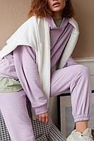 Женские осенние трикотажные фиолетовые спортивное брюки AIRIN 2442/2 42р.