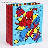"""Пакет ламинат вертикальный """"С Днем Рождения!"""", Человек-паук, 23х27х11,5 см"""