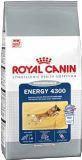 Royal Canin ENERGY 4300 Сухой корм для взрослых собак, подверженных коротким, интенсивным нагрузкам (17 кг)