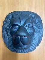 Льве львы арыстан басы