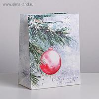 Пакет ламинированный вертикальный «С Новым годом и Рождеством», MS 18 × 23 × 10 см