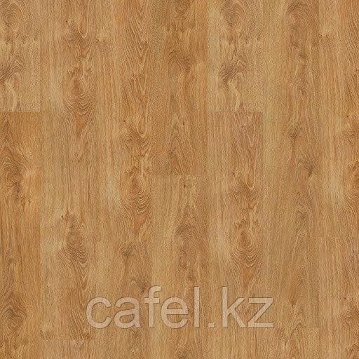 Ламинат Castello Classic | 32 class | 8 мм | 8635 Дуб северный