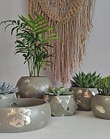 Комнатные растения и суккуленты в интерьерных горшках ручной работы