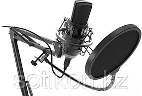 Студийный микрофон Ritmix RDM-169 черный