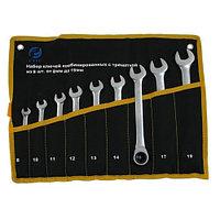 Набор ключей Комбинир. из 9-ти шт. (рожк. и накид. с трещеткой) (8 - 19) хром-ванадий (сатинфиниш) #063