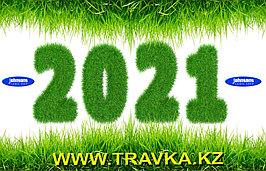 В Новый год с новыми надеждами 1