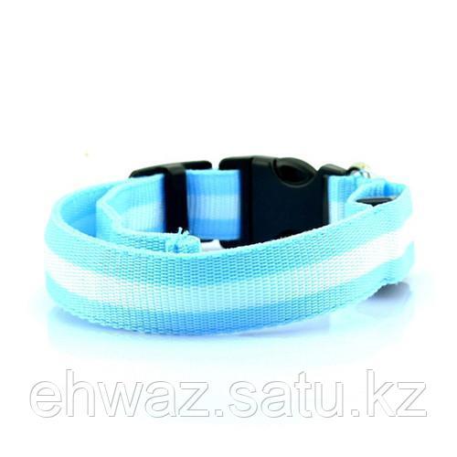 Светодиодный ошейник для собак usb, цвет голубой, размер M