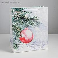 Пакет ламинированный вертикальный «С Новым годом и Рождеством», ML 23 × 27 × 11,5 см