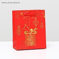 """Пакет ламинированный """"Подарочный"""", 11,5 x 14,5 x 6 см"""