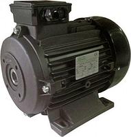 Электродвигатель RAVEL H100 4,0 кВт, полый вал - 24 мм [1835A]