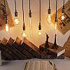 Лампы накаливания Эдисона 40 ватт.  лампы ретро-стиля, ретро лампы, винтажные лампы, старинные лампы, фото 10