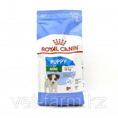 Royal Canin Mini Puppy 2kg Для Щенков Мелких Пород