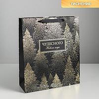Пакет ламинированный вертикальный «Чудесного Нового года», M 26 × 30 × 9 см