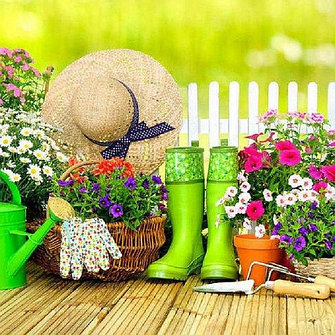 Уход за цветами и аксессуары