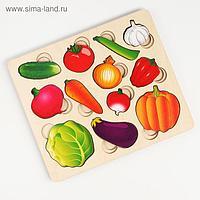 Развивающая доска «Часть и целое. Овощи» с разрезными вкладышами внутри