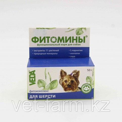 ФИТОМИНЫ С Фитокомплексом Для Шерсти Для Собак