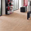 Floordreams Vario   33 Класс   12 мм   8634 Дуб Брашированный, фото 2